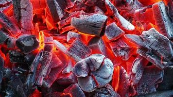 queima de carvão video