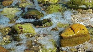 roches dans l'eau