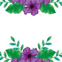 frame of flowers purple with branches and leafs vector