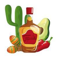 Mexican tequila bottle chillis avocado maracas and cactus vector design