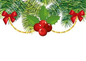 holly fruits with decoration christmas isolated icon vector