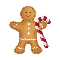 ginger cookie christmas with sweet cane vector