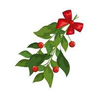 hojas con semillas y lazo de cinta decoracion navidad vector