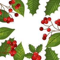 frame of leafs and branches with seeds christmas icons vector