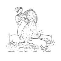 Female Peasant Farmer Feeding Pigs Line Art Drawing vector