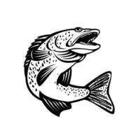 Walleye Pikeperch Pickerel or Yellow Pike Jumping Up Retro vector