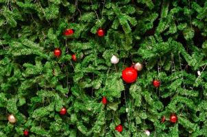 Christmas tree with red ornaments photo