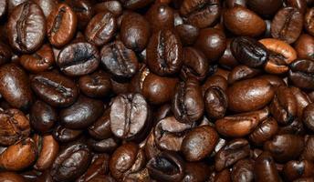 granos de café de primer plano