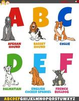 cartoon alphabet collection with purebred dogs vector