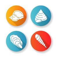diferentes conchas marinas diseño plano larga sombra glifo conjunto de iconos vector