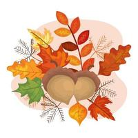 nuts with leafs of autumn vector