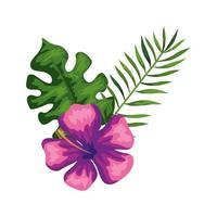 flor natural de color morado con rama y hojas