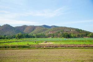tierras de cultivo y montañas