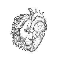 cabeza de corazón de león de mitad león y mitad corazón humano dibujo en blanco y negro vector