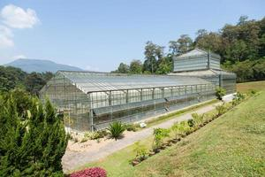 Edificio de fitomejoramiento en una granja. foto