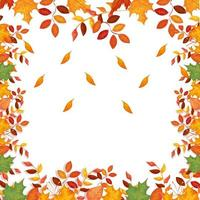 frame decoration of leafs autumn