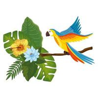 parrot animal in branch with leafs and flowers vector