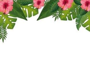 decoration of flowers with leafs isolated icon vector