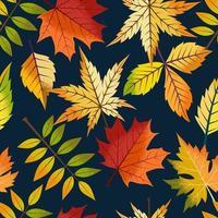hojas de otoño de patrones sin fisuras. vector