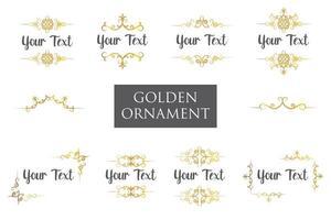 conjunto de colección de adornos florales dorados vector