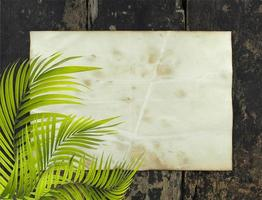 Palm leaves with rustic paper