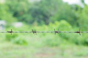 Barbed wire close-up photo