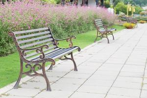 Benches in the park photo