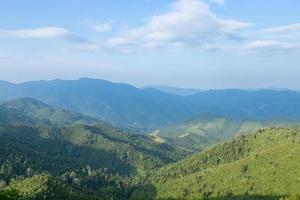 cielo, bosque y montañas