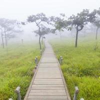 pasarela de madera en tailandia