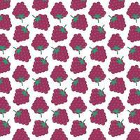 Pattern of raspberries vector