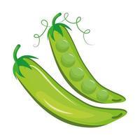 frijoles frescos vegetales icono de comida sana