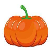 fresh pumpkin vegetable healthy food icon