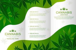 folleto de botella médica de cannabis