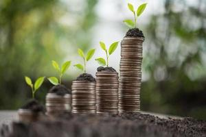 una pila de monedas en la naturaleza verde