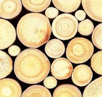 Fondo de textura de registro de madera