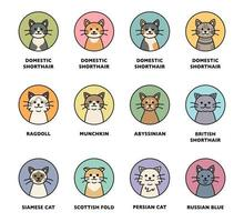 Cute cat breed icon set. vector