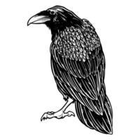 Cuervo malvado negro para el diseño de tatuajes y camisetas con tema de Halloween. vector
