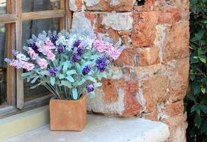 caja de flores en la ventana foto