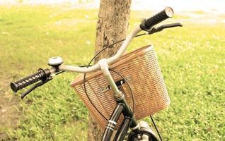 bicicleta contra arbol foto