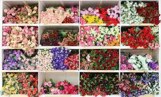 Flowers on shelves