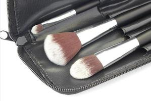 Makeup brushes in black bag
