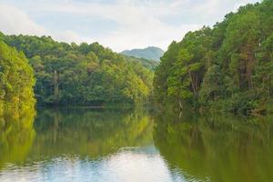 bosque y embalse en tailandia