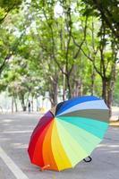 paraguas en la carretera en el parque foto