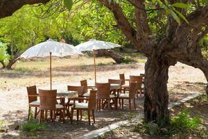 Dining tables and umbrellas