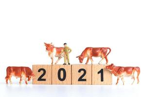 Mini figurines of ox on the year 2021