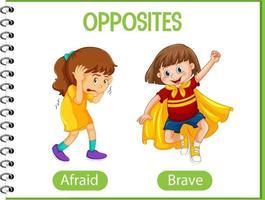 palabras opuestas con miedo y valiente vector