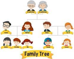diagrama que muestra el árbol genealógico de tres generaciones vector
