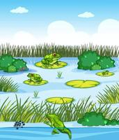 Pond scene with many frogs and plants element vector
