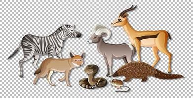 grupo de animales salvajes africanos sobre fondo transparente vector