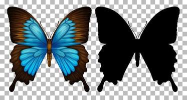 Butterfly and its silhouette on transparent background vector